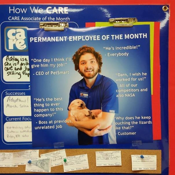For My Last Day Of Work At The Pet Store, I Made Myself Employee Of The Month
