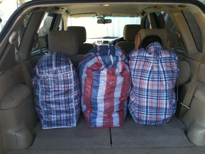 Three Similar Bags