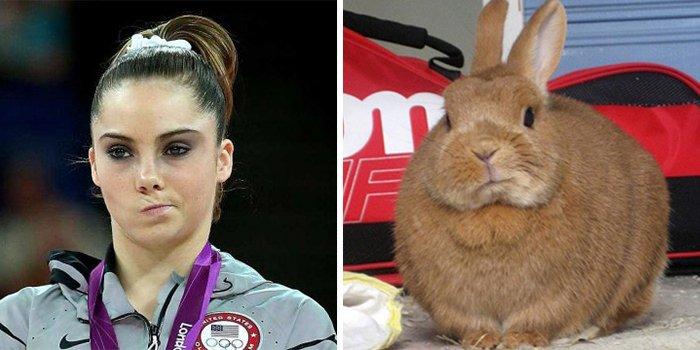 Mckayla Maroney Looks Like This Bunny