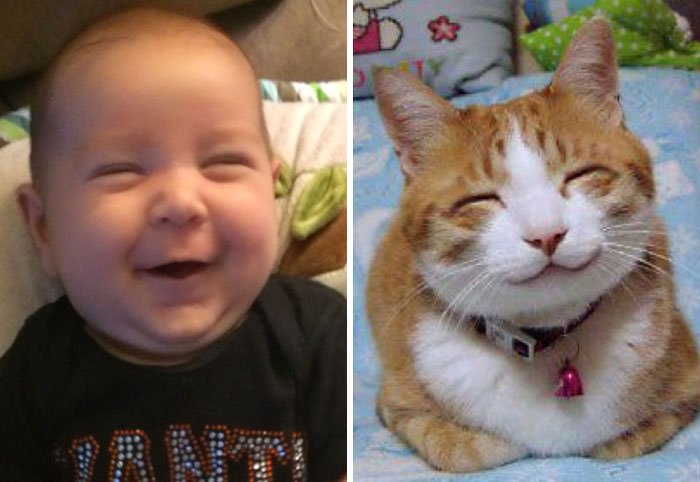 This Happy Baby Looks Just Like Happy Internet Cat!