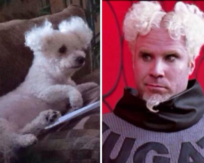 Abby And Will Ferrell