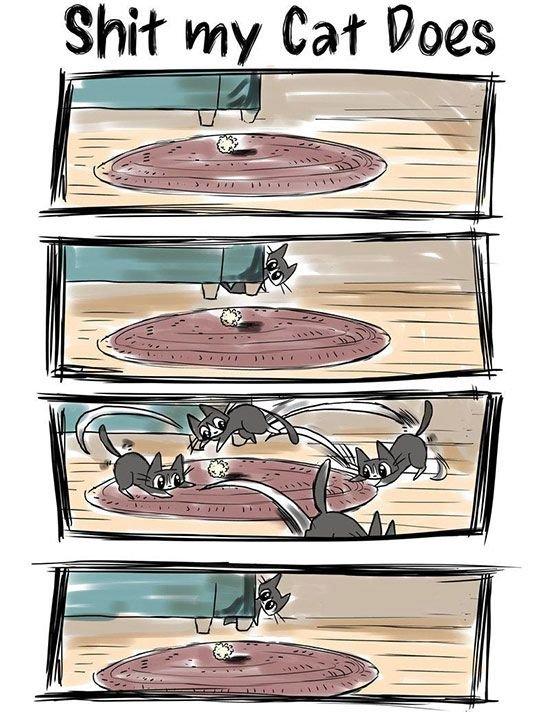 cat-owner-22
