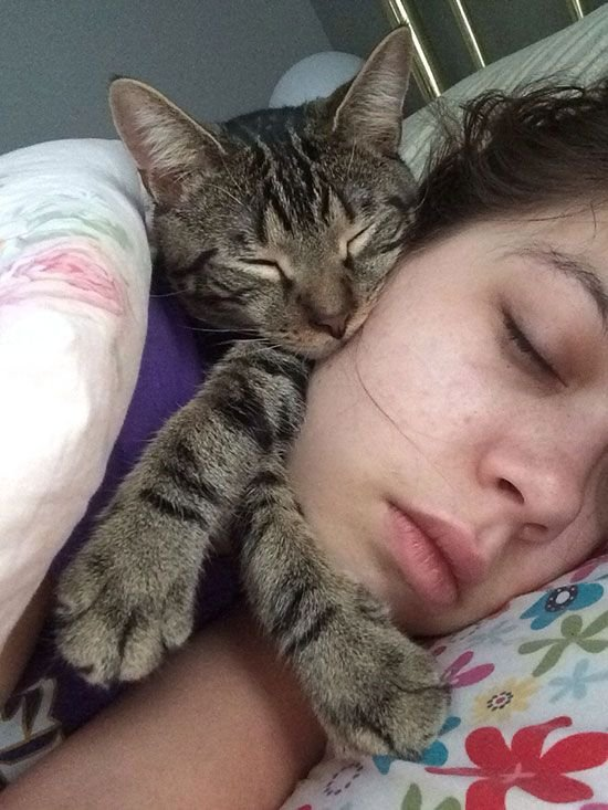 cat-owner-27