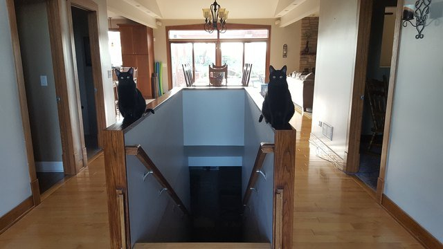 Two black cats sitting on either side of a staircase banister.