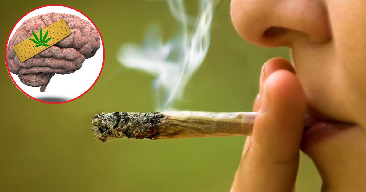agag.jpg?resize=412,232 - Researchers Found Cannabis Causes More 'Ever Lasting Damage' On Teenage Brains Than Alcohol