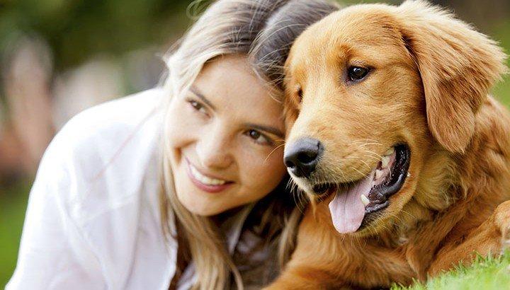 are you a responsible dog owner blog 720x410.jpg?resize=1200,630 - Veterinário revela o que os donos devem fazer durante os últimos momentos de vida de seus pets