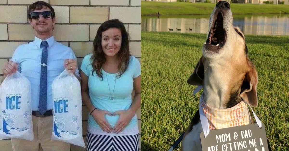 ccccccc.jpg?resize=1200,630 - 23 réactions hilarantes à l'annonce d'une grossesse immortalisées en photo.