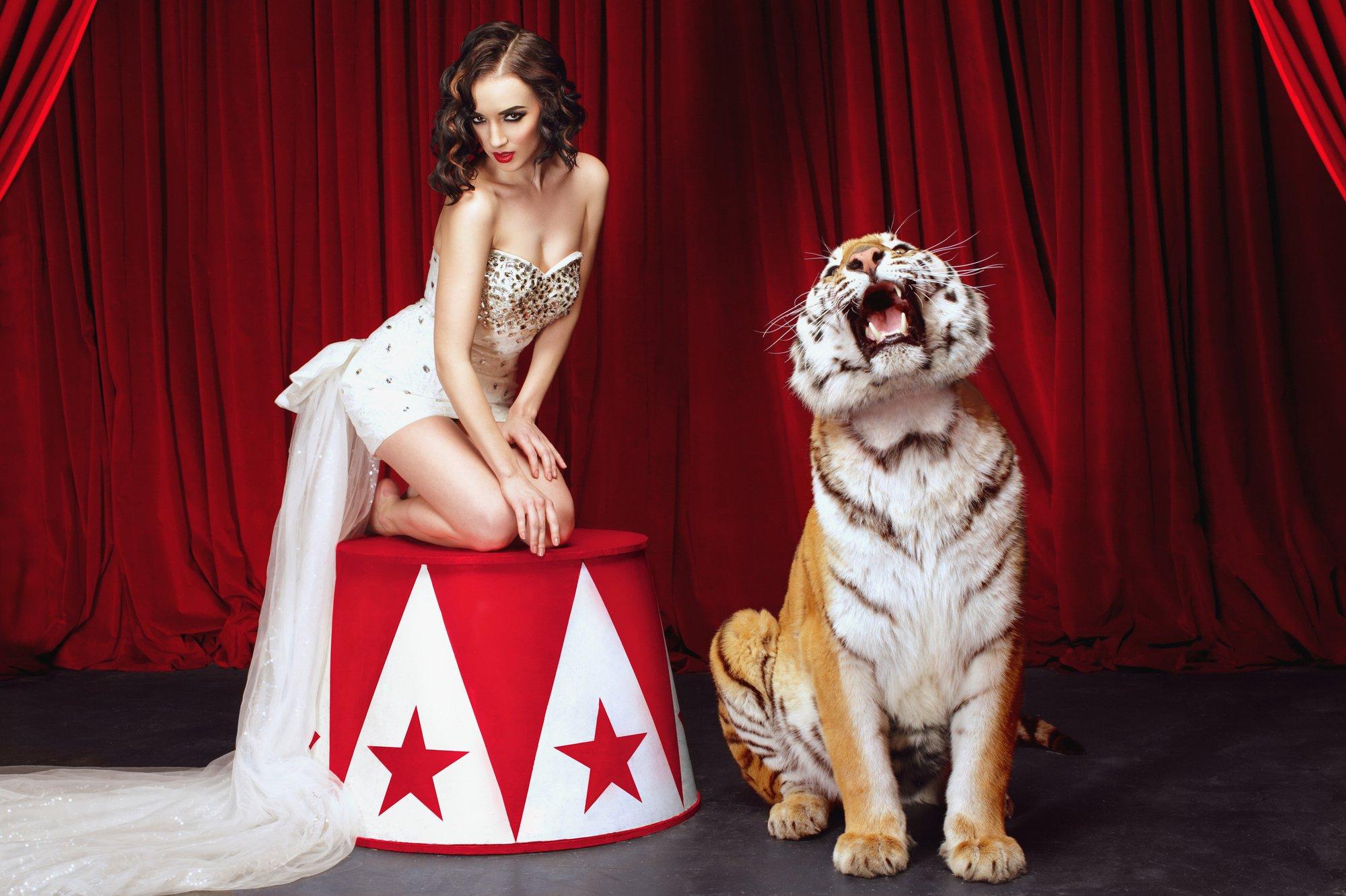 depositphotos 95264180 l 2015.jpg?resize=412,232 - Après avoir travaillé pour un cirque, elle se confie sur le sort réservé aux animaux.