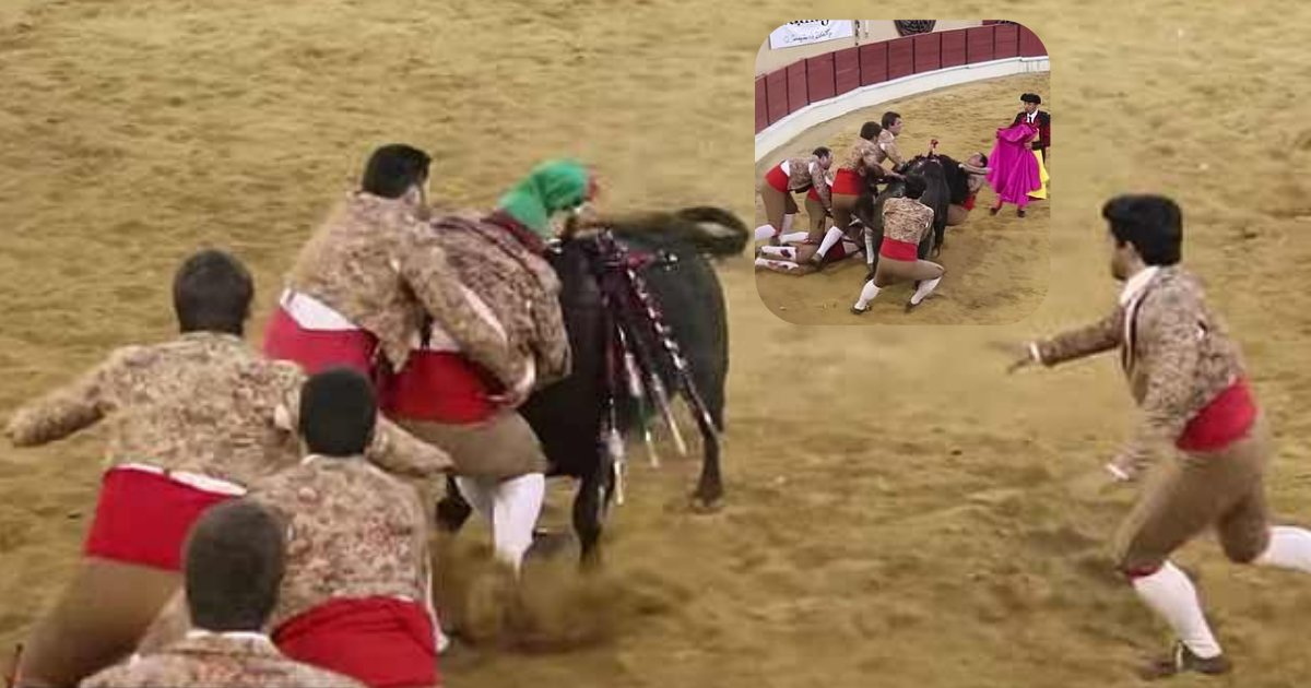 divya5 4.png?resize=412,232 - A Bull Falling Heavy on Six Bullfighters by Creating a Rampage and Sending One Matador to Hospital with Significant Injuries