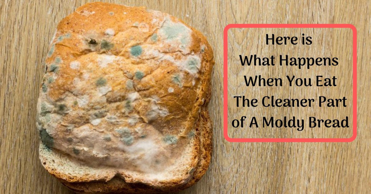 divya6 7.png?resize=1200,630 - The Clean Part Of The Bread Is Not Safe To Eat, Molds Are Everywhere And Can Severely Harm You