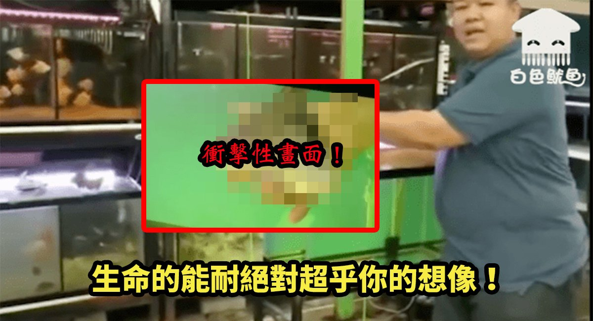 e58d8ae9ad9a.jpg?resize=300,169 - 媒體爭相報導令人起雞皮疙瘩的生命力!泰國水族箱竟出現「陰屍魚」!?