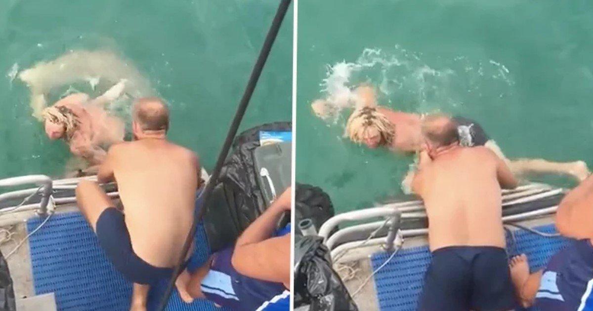 """featured image 15.jpg?resize=1200,630 - Un homme """"courageux"""" décide de lutter avec un requin dans la mer et le regrette instantanément"""