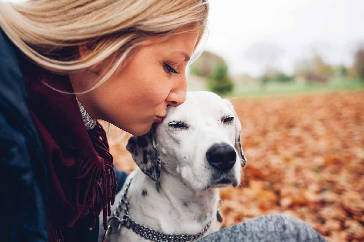 istock 640199772.jpg?resize=412,275 - 10 formas com as quais os cachorros dizem que te amam