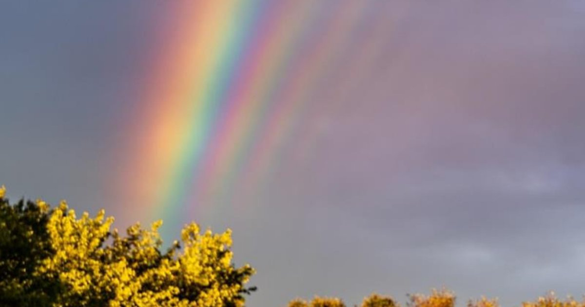 rainbow3.png?resize=300,169 - Exceptionally Rare Photo Of FIVE 'Supernumerary Rainbows' Captured In New Jersey