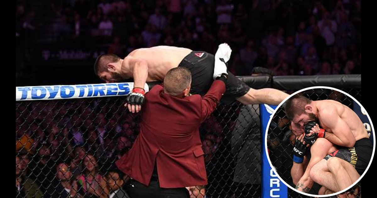 shivam5.png?resize=1200,630 - McGregor Nurmagomedov Brawl Started- Pictures Show it was the Irishman Who Threw in the First Punch