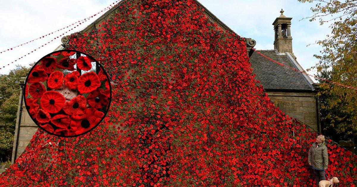 untitled design 83 1.png?resize=412,232 - Une église a été couverte de 9 000 coquelicots tricotés en hommage aux paroissiens décédés au cours de la Seconde Guerre mondiale