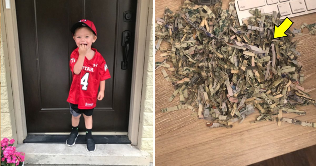 vdd.jpg?resize=1200,630 - 2 Year Old Kid Shredded $1000 Of Cash That Parents Spent A Year Saving
