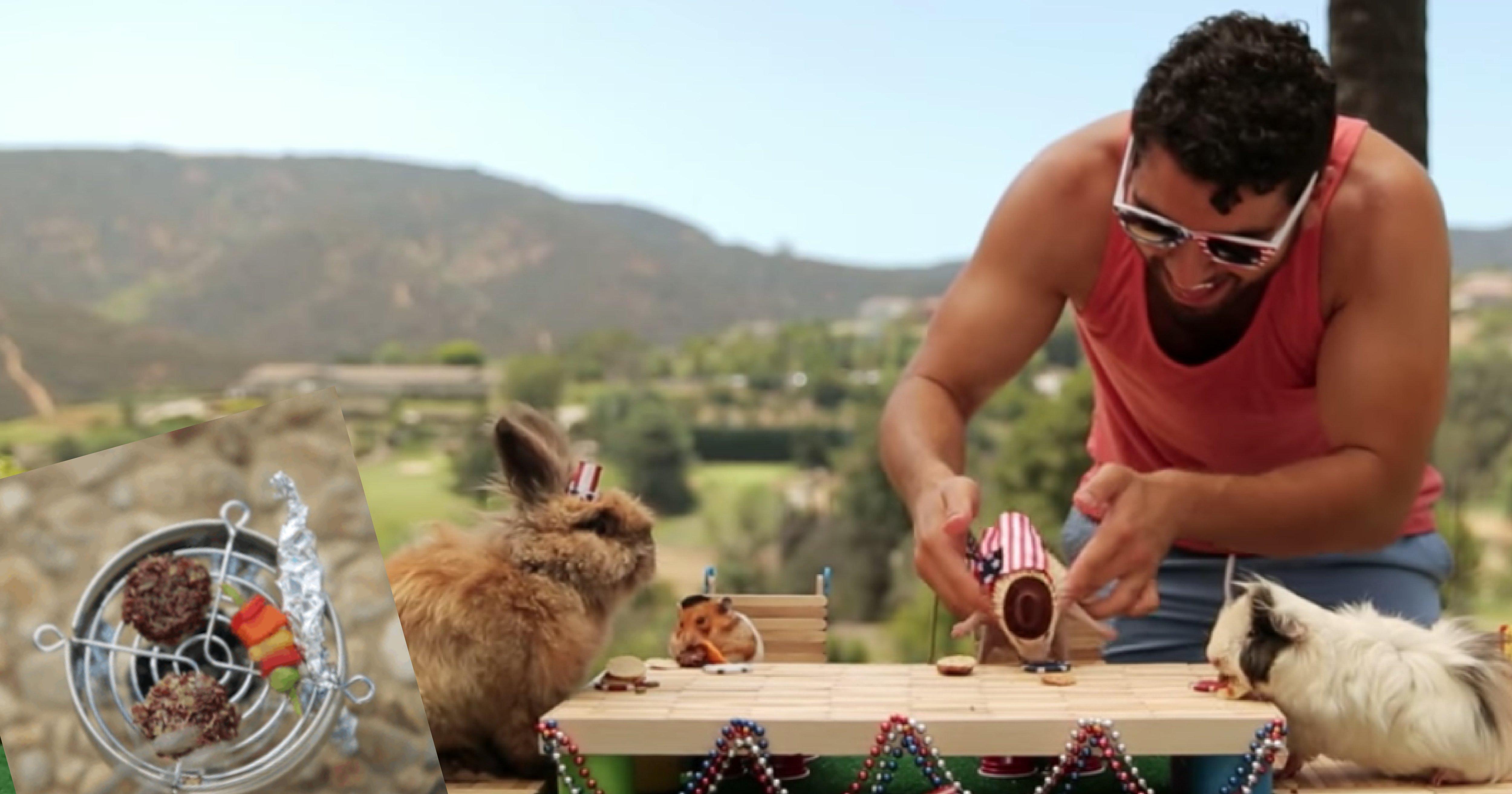 vonvone5b081e99da2 01 2.png?resize=300,169 - 【療癒影片】倉鼠、刺蝟、兔兔一起開趴,主人巧手製作「超迷你BBQ」萌到融化!