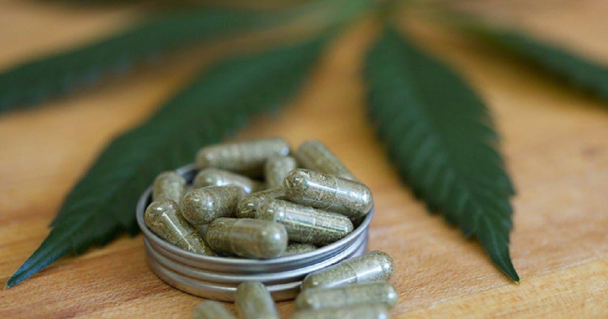 y3.jpg?resize=412,232 - Cette nouvelle gélule de cannabis peut remplacer un médicament anti-douleur