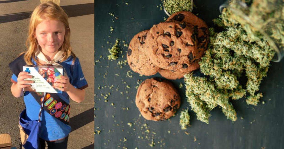 yogesh5 13.png?resize=412,232 - Une fillette scout a vendu tous ses cookies devant un magasin de cannabis le même jour, lorsque la marijuana est devenue légale