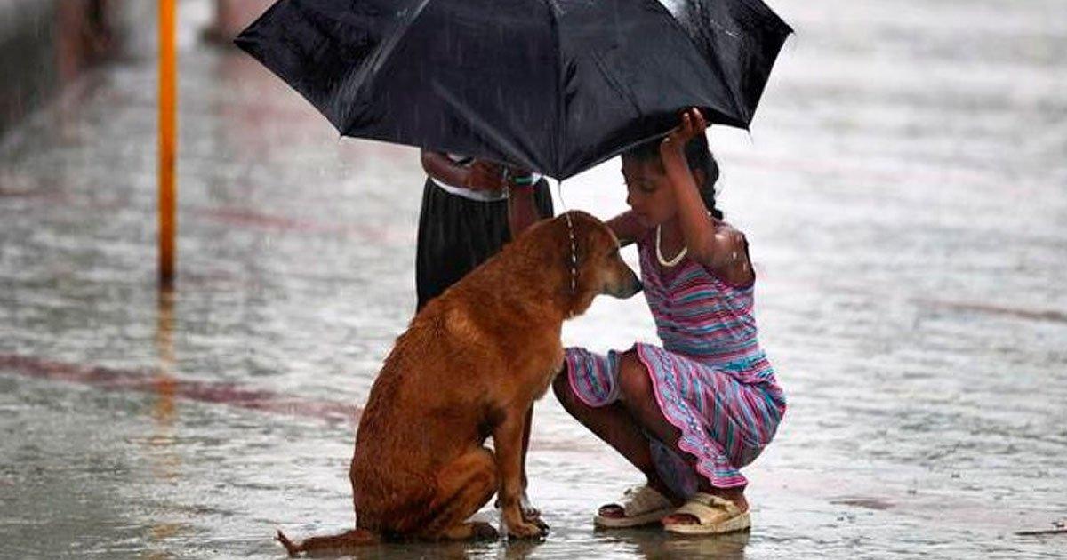 1 56.jpg?resize=1200,630 - 15 Fotos que muestran el amor que todos deseamos encontrar