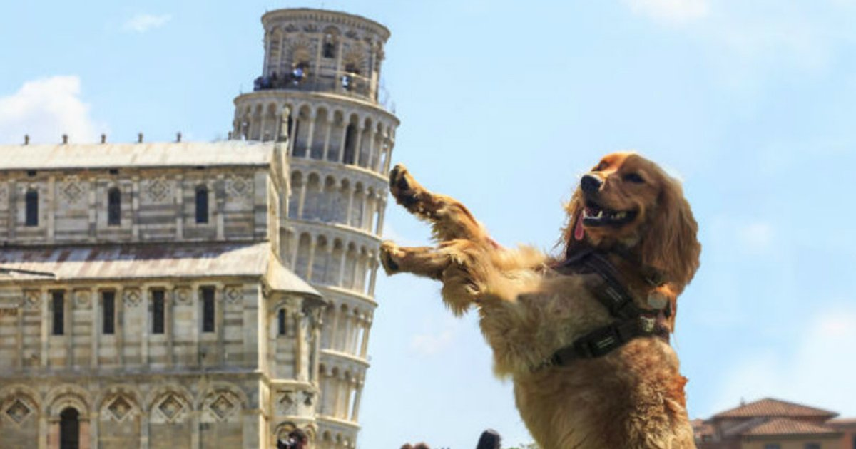 11 60.jpg?resize=1200,630 - 15 Brilliantly Original Photos of People Posing with the Leaning Tower of Pisa