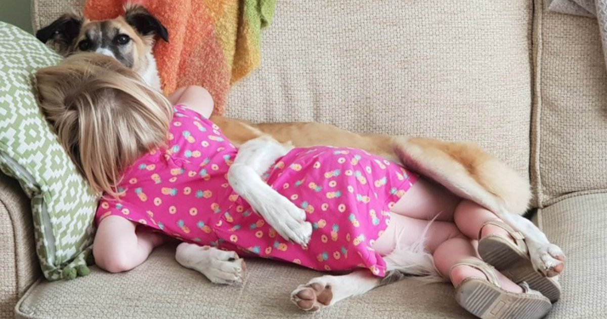 3 370.jpg?resize=636,358 - 23 Photos That Show Why Every Child Should Have a Pet (New Pics)