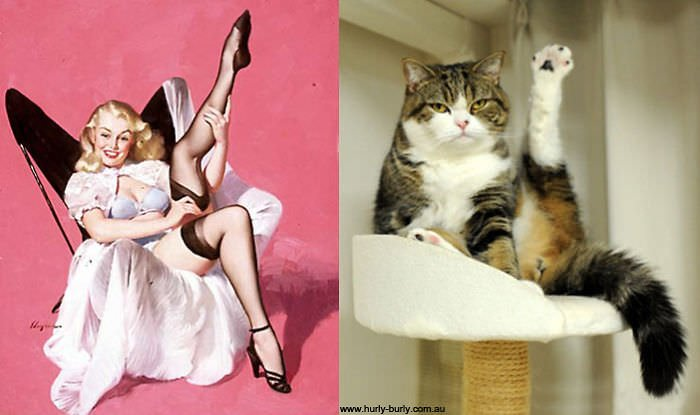 This Pin Up Looks Like A Cat