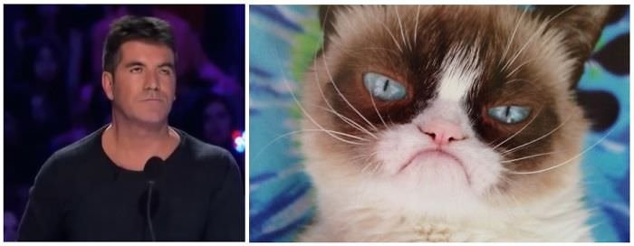 Simon Cowell Looks Like Grumpy Cat