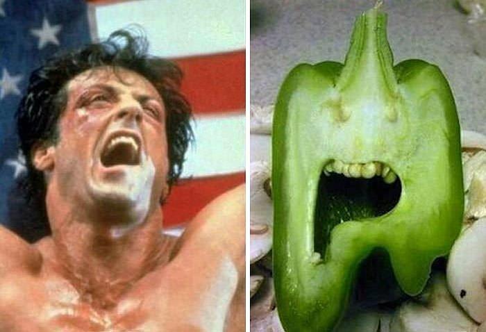 Paprika looks like Sylvester Stallone