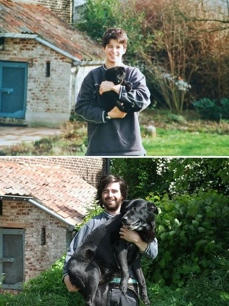 animals-before-after-then-now-37_resultat
