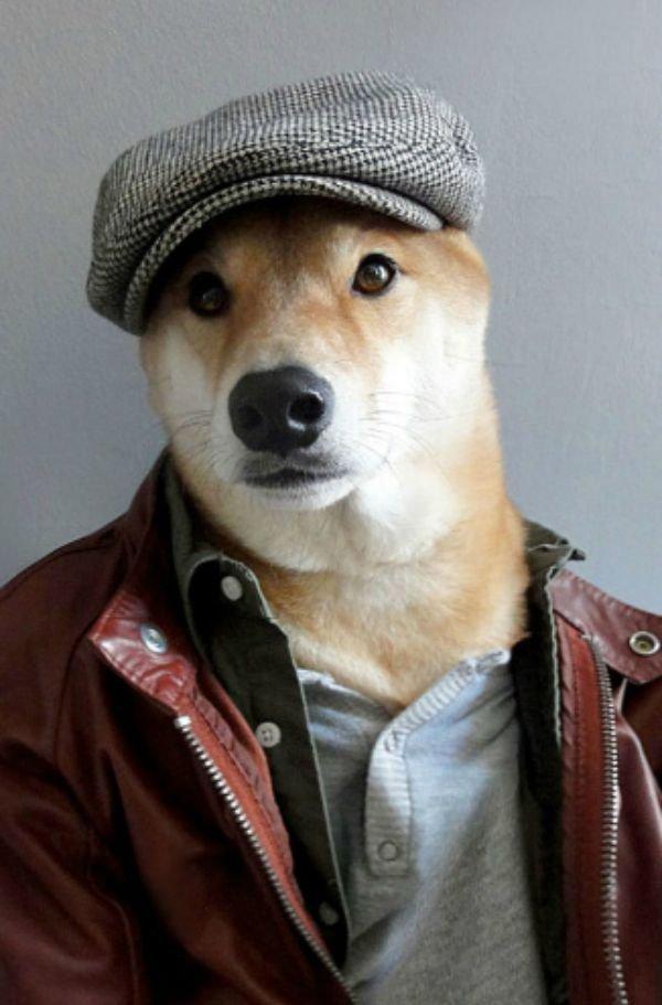 dog-selfie15 (1)