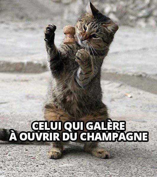 invisible-champagne
