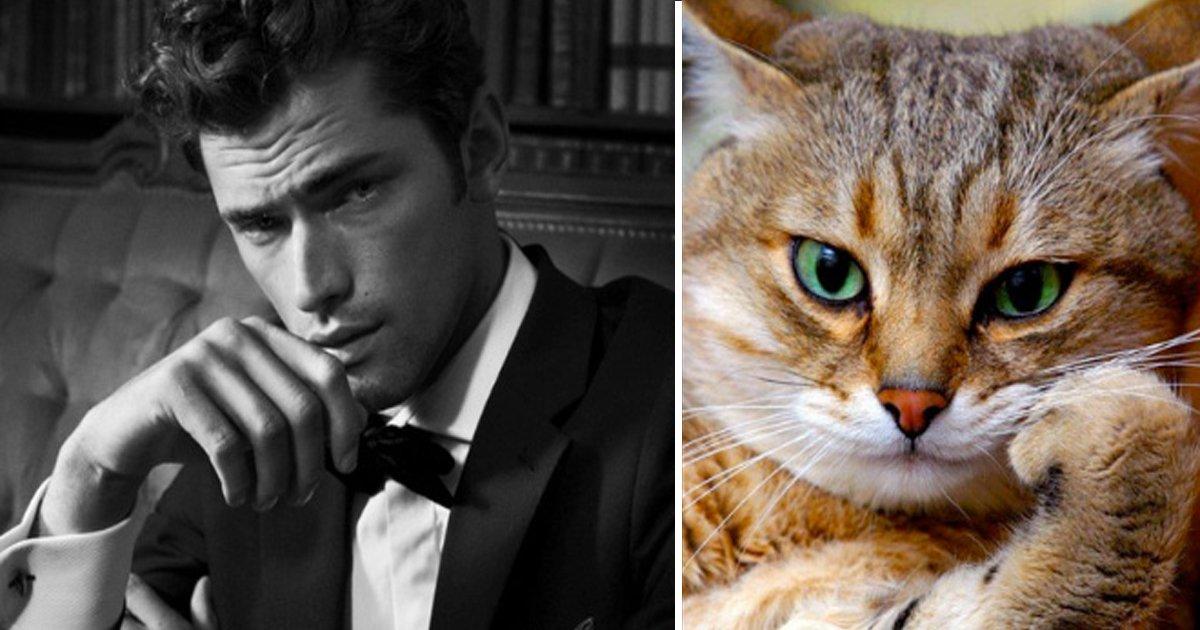 capa12 11.jpg?resize=412,232 - 22 des beaux gosses qui ressemblent à des chatons (même vaguement), graou graou