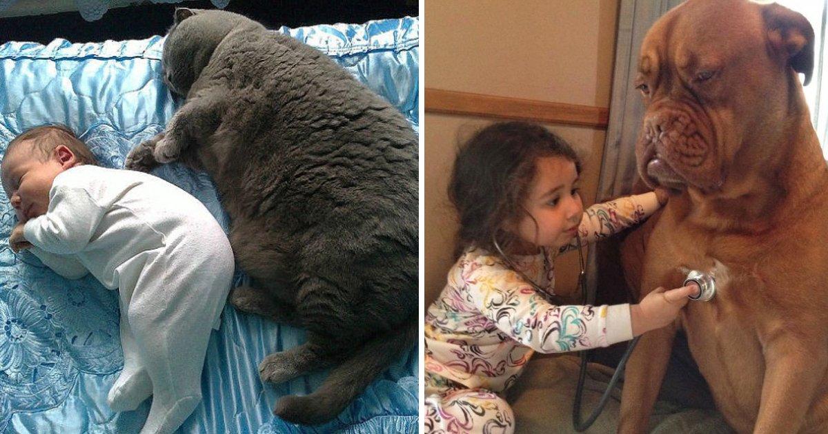 capa18.jpg?resize=1200,630 - 27 evidências mostram por que as crianças devem passar mais tempo com seus animais de estimação