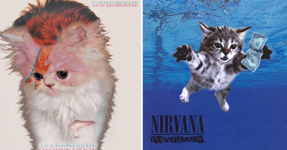 capa2 16.jpg?resize=1200,630 - 20 des pochettes d'albums version « chatons »