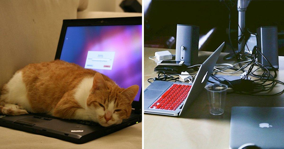 capa20 6.jpg?resize=412,232 - 12 Hábitos que reduzem a vida útil do seu laptop