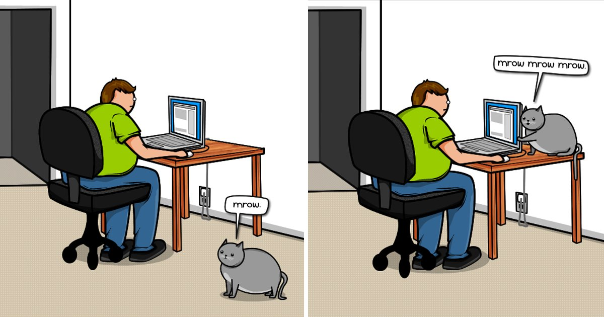 capa9 12.jpg?resize=1200,630 - 20 des trucs que fait votre chat quand il veut attirer votre attention (en illustrations)
