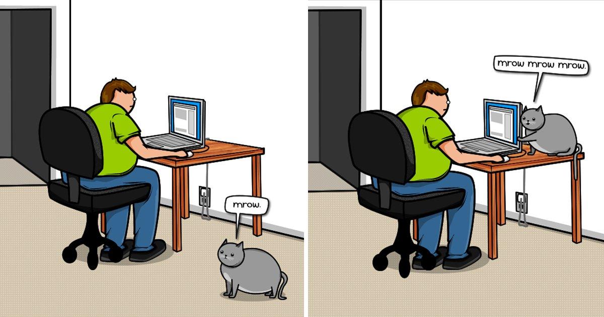 capa9 12.jpg?resize=412,232 - 20 des trucs que fait votre chat quand il veut attirer votre attention (en illustrations)