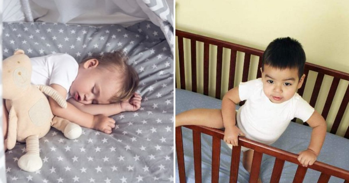 cot6.png?resize=1200,630 - Toddlers Should Remain Sleeping In A Cot Until They Are 3 Years Old, Experts Claim