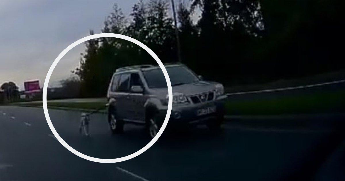 d4 3.png?resize=412,232 - Un cycliste filme un homme qui promène son chien de la fenêtre de sa voiture sur une autoroute
