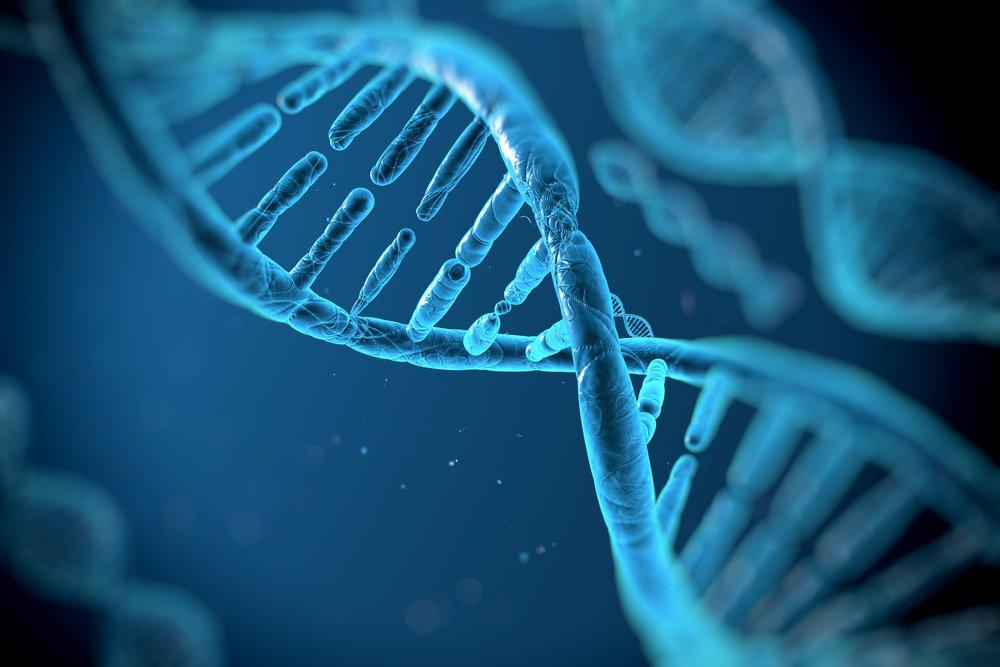 """depositphotos 35658689 m 2015.jpg?resize=412,232 - Une famille s'est """" effondrée """" après qu'un test ADN ait révélé la vérité sur leur patrimoine génétique."""