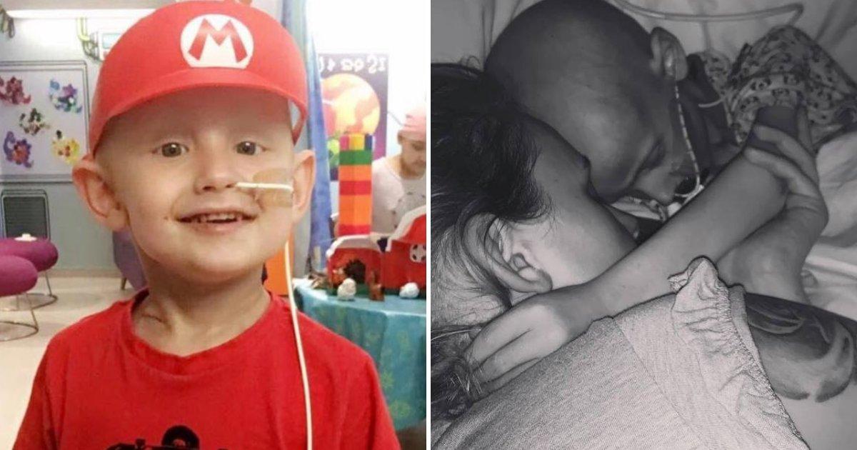dog6.png?resize=412,232 - Un garçon de 5 ans atteint d'un cancer présente ses excuses à sa mère avant de mourir dans ses bras