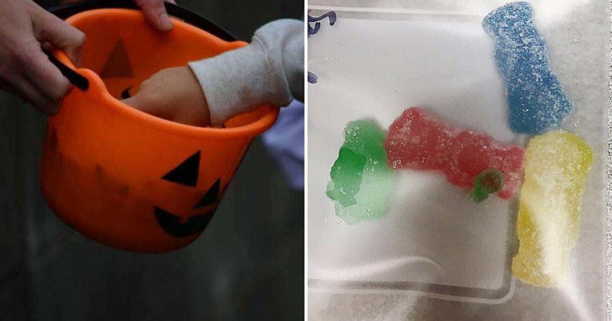 gummies.png?resize=412,232 - Des parents hospitalisés après avoir mangé des bonbons contenant de la METH que leurs enfants ont reçus pendant Halloween