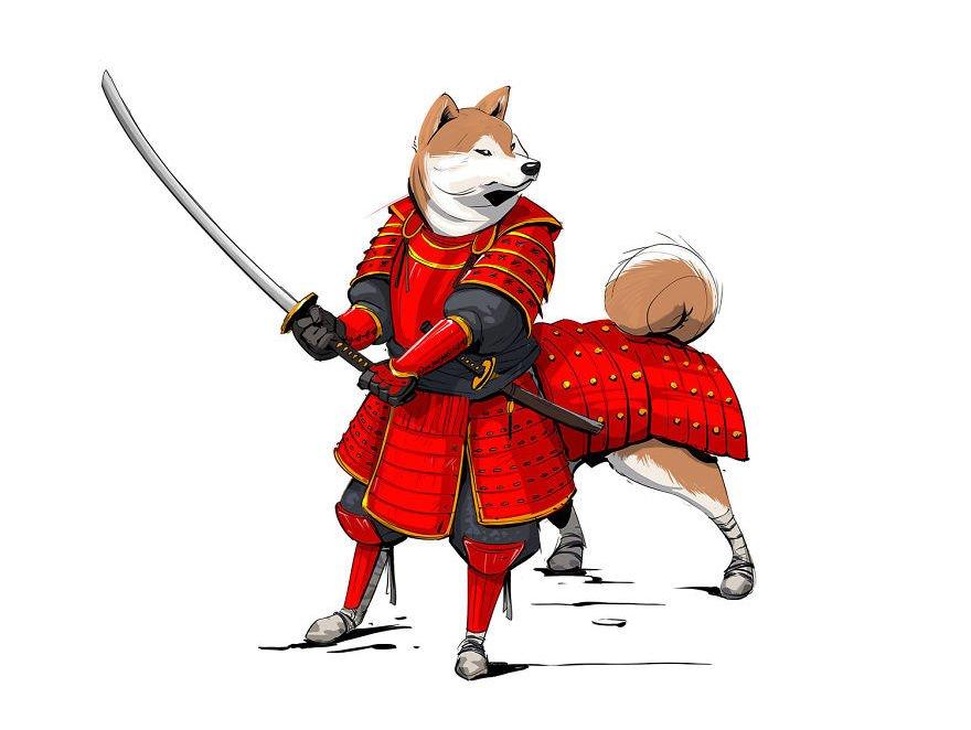 nikita orlov races de chiens guerriers 6.jpg?resize=1200,630 - Il transforme chaque race de chiens en guerrier légendaire.