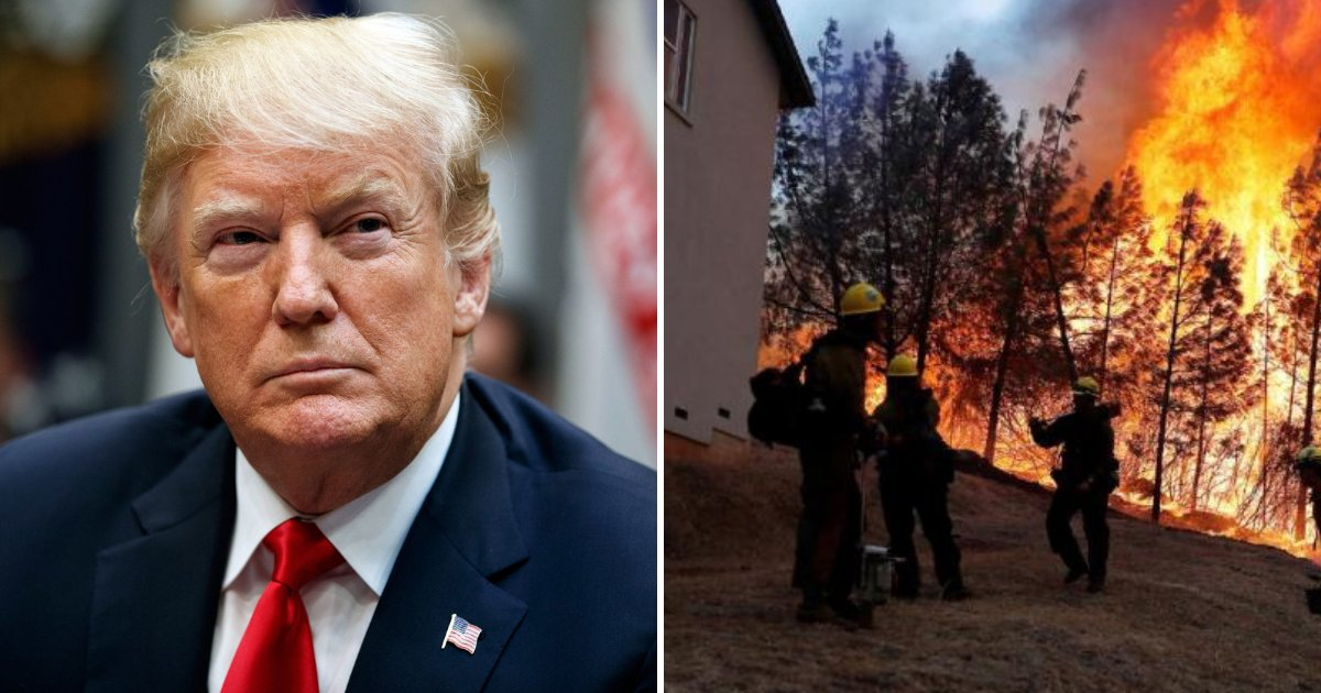 trump3 2.png?resize=412,232 - Trump Blames 'Poor' Forest Management For Fires In California And Threatens To Withhold Federal Payments