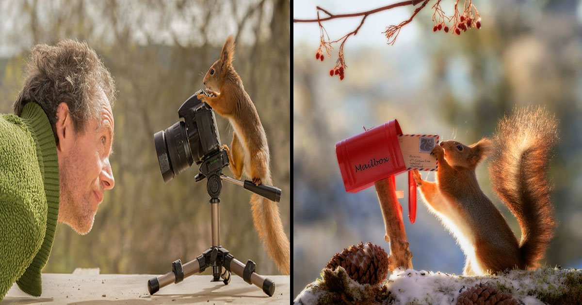 16 5.jpg?resize=412,232 - International Awarded Photographer Followed Squirrels With His Camera Every Day For 6 Years And He Captured Amazing Pictures