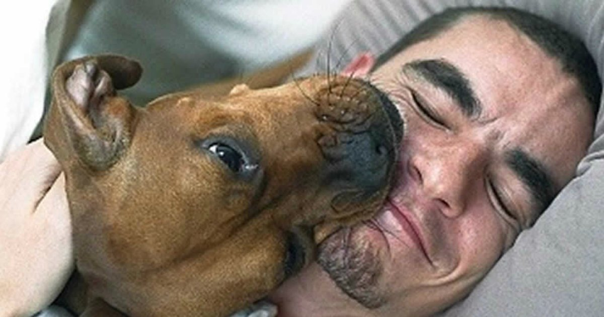 4 75.jpg?resize=1200,630 - 35+ Hysterical Photos That Only Dog Owners Will Understand