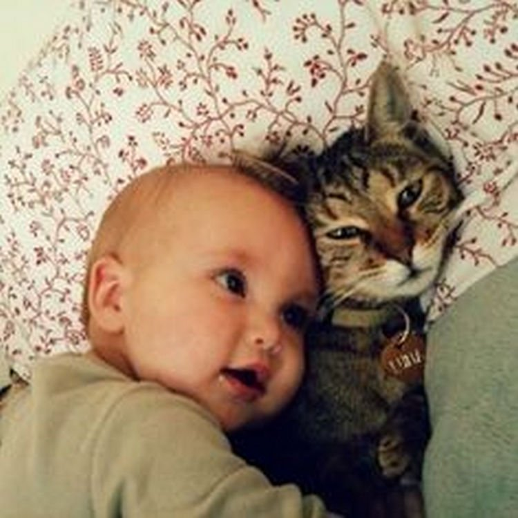 "21 Cats Babysitting Babies - ""I can hear your heart beating!"""