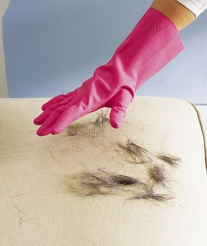 35 House Cleaning Tips - Removing pet hair using a rubber glove.
